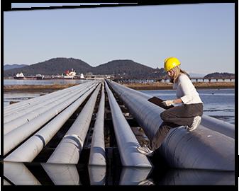 Servicios Iberdrola para Negocios y Autónomos: Auditoría medioambiental