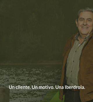 Iberdrola ofertas y servicios for Iberdrola oficina virtual